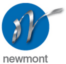 NEWMONT ENGINEERING LIMITED